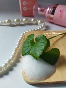 ingredient facial foam halwey